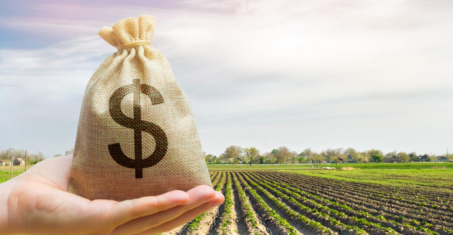Read more about the article Flexible farm lease proves to be a win-win, yet again